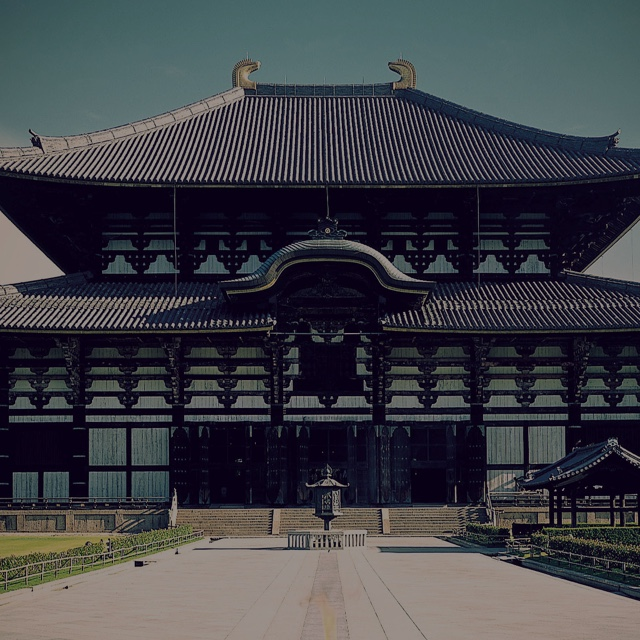 History/Enjoying Nara City